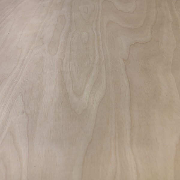 Plywood Birch Pre-Lacquered